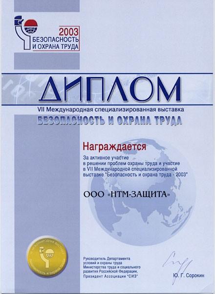 Достижения ДИПЛОМ За активное участие в решении проблем охраны труда и участиев vii Международной специализированной выставке